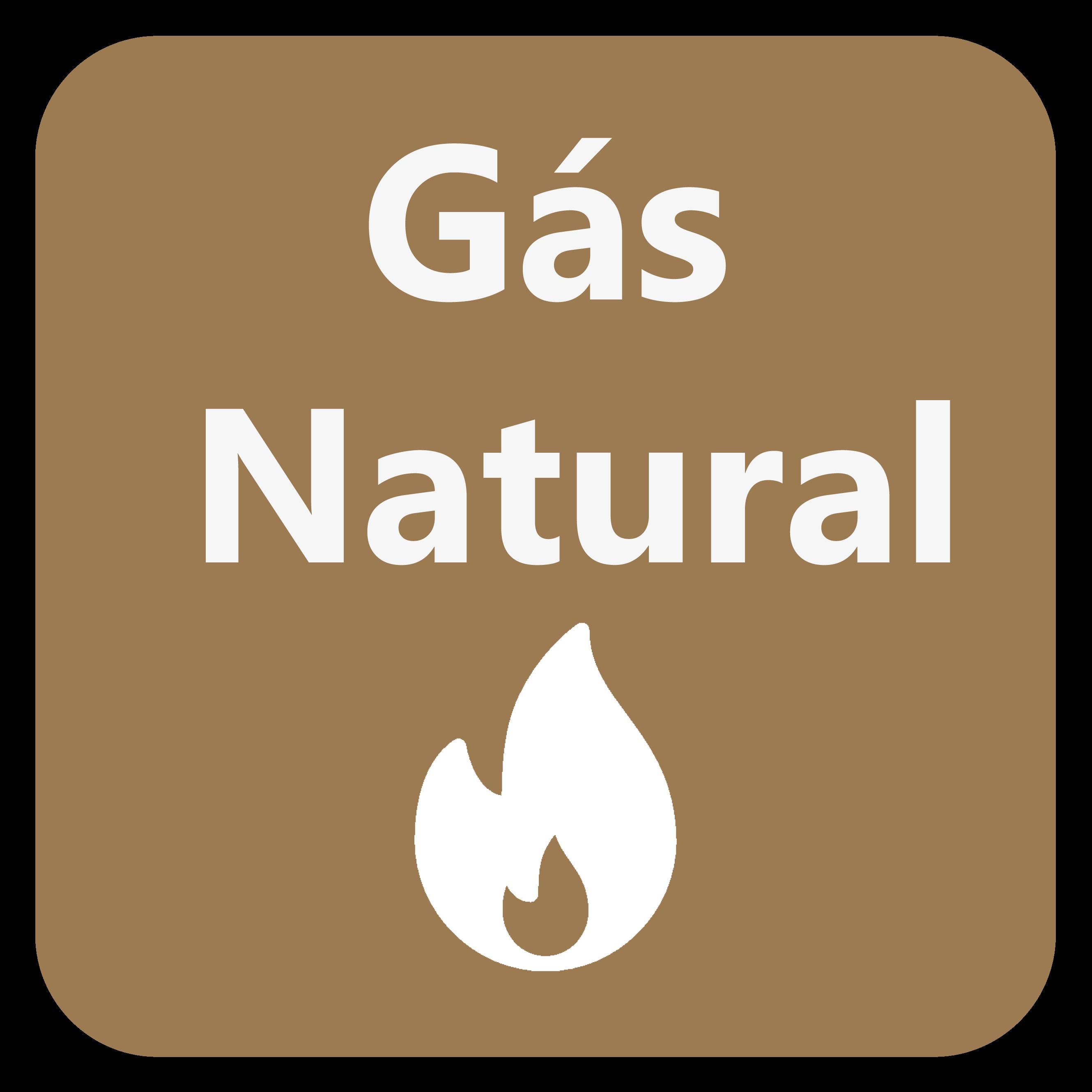 Os queimadores do equipamento estão preparados para trabalhar apenas com gás natural.