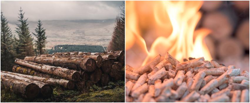 pellets ou lenha: qual escolher?
