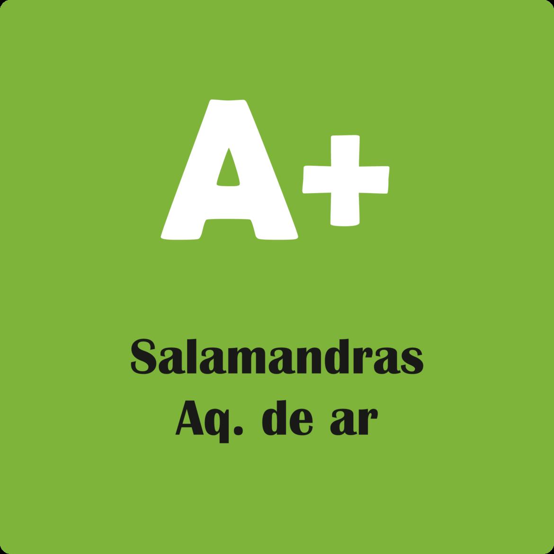 salamandra de aquecimento de ar com classificação A+