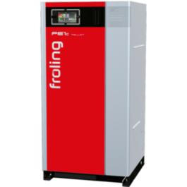 caldeira de condensação PE1c Pellet